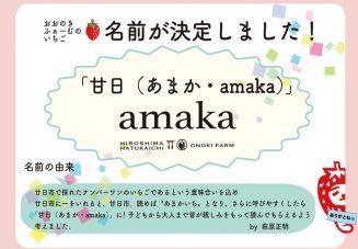amaka披露