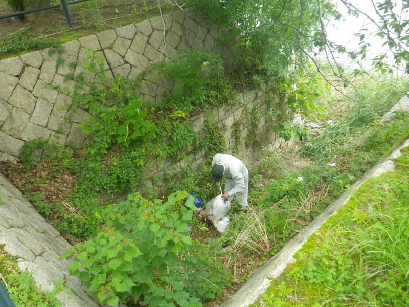 河川清掃R2.7月-3
